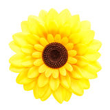Artificial sunflower on white  background Stock Images