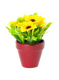 Artificial Sunflowers With Clay Pot. Stock Photos
