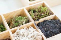Artificial terrarium supply kit moss plant dirt decoration box. Artificial terrarium supply kits moss plant dirt decoration box Royalty Free Stock Image