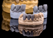 Artificial tooth Stock Photography