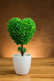 Artificial tree in heart shape Royalty Free Stock Photography