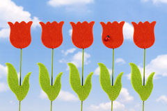 Artificial tulip Stock Image