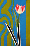 Artificial tulip in metal vases Stock Images