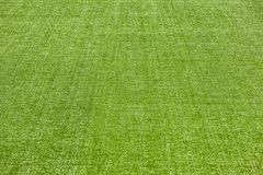 Free Artificial Turf Royalty Free Stock Photo - 144904615