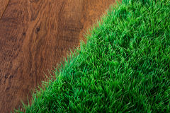 Artificial turf close-up Royalty Free Stock Photo