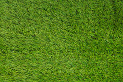 Artificial turf green grass Royalty Free Stock Photos