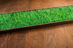 Artificial turf on hardwood floor Royalty Free Stock Image