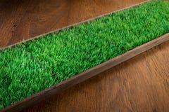 Artificial turf on hardwood floor Royalty Free Stock Photos