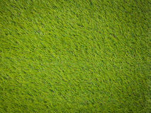 Artificial turf japanese green Stock Photography