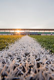Artificial turf pattern and stadium Stock Image