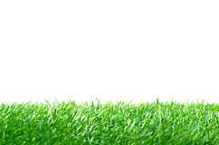 Artificial Turf for Soccer Field on White Background. Royalty Free Stock Images