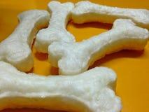 Artificial um osso branco Imagem de Stock