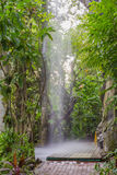 Artificial waterfall in botanic garden Stock Photo