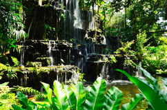 Artificial waterfall in botanic garden Stock Image