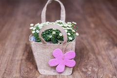 Artificial white flowers with pink  gift card packed in canvas bag Royalty Free Stock Photography