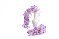 Artificial Wisteria Flowers In White Pitcher Royalty Free Stock Image