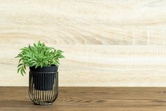 Artificial wood flowerpot on wooden table, small light brown colour in room royalty free stock photos
