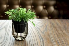 Artificial wood flowerpot on wooden table, small light brown colour in room stock photo