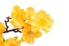 Artificial yellow flowers Stock Photo