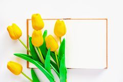 Artificial yellow tulips with blank notebook on white background. For workspace, nature decoration and springtime concept stock photos