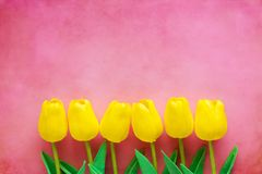 Artificial yellow tulips on pink background. For nature decoration and springtime concept royalty free stock photography