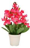 Artificiale dell'orchidea del fiore fiorisce il mazzo isolato sulla b bianca Immagini Stock Libere da Diritti