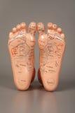 Artificiale un piede. Fotografie Stock