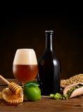 Artigianal beer Stock Images