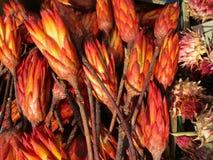 Artigianato secchi dei fiori sul festival della cipolla a Weimar Immagini Stock Libere da Diritti