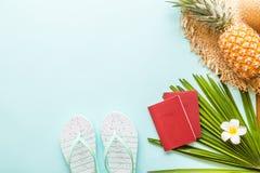 Artigos colocados lisos do curso: abacaxi fresco, deslizadores da praia, flor tropical e folha de palmeira Lugar para o texto Vis fotos de stock