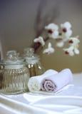 Artigos do banho Imagem de Stock Royalty Free
