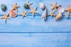 Artigos marinhos no fundo de madeira azul Imagens de Stock Royalty Free