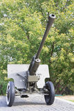 Artillery guns on a background of trees Royalty Free Stock Photo