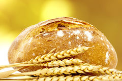 Artisan bread. And wheat spikes background stock photos