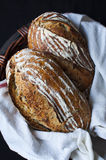Artisan bread in basket. Artisan loaves in basket with napkin against black background Royalty Free Stock Photography