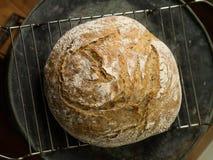 Artisan bread. Fresh loaf of Artisan bread on cooling rack Stock Image