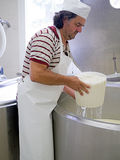 Artisan cheese making, rural craft. Royalty Free Stock Photo