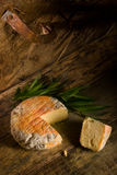 Artisan cheese still life royalty free stock images