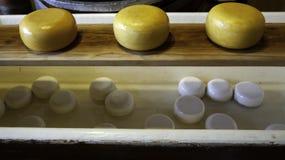 Artisan edam cheese. Detail of Dutch cheese royalty free stock image