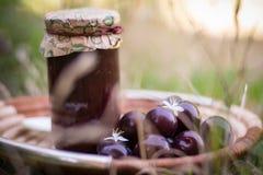 Artisan plums marmalade stock photo