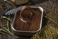 Artisan salted anchovy fillets in olive oil, close-up royalty free stock photography