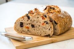 Artisanaal Bakkerijbrood met Droge Tomaten en Zwarte Olive Ready om te eten stock afbeelding