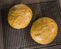 Artisanaal rozemarijnbrood bij het koelen van rek stock foto's