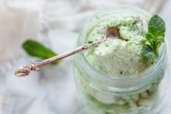 Artisanal мороженое Mojito и конец sprig мяты вверх Стоковые Изображения