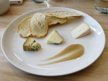 Artisanal Cheese Plate. A sampling of artisanal cheeses arranged with crostini and pear puree Stock Images