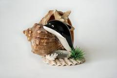 Artisanat avec la coquille et les étoiles de mer de mer Photo libre de droits