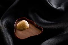 Artisian czekolady zdjęcia royalty free