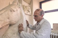 Artist in the art studio at work on a  sculpture of large clay horse head Stock Photos
