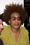 Macy Gray Royalty Free Stock Photo