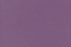 Artist's Coarse Grain Pastel Paper Violet Texture Sample Royalty Free Stock Photography
